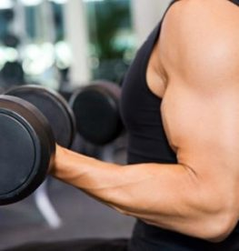 Maximising Muscle Growth | No1 Fitness
